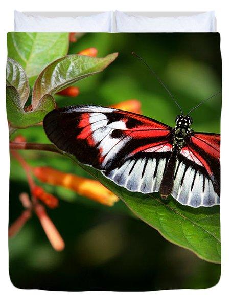 Piano Key Butterfly On Fire Bush Duvet Cover