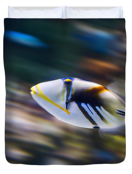 Picasso - Lagoon Triggerfish Rhinecanthus Aculeatus Duvet Cover by Jamie Pham