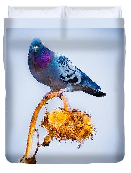 Pigeon On Sunflower Duvet Cover