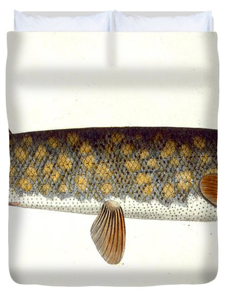Pike Duvet Cover by Andreas Ludwig Kruger