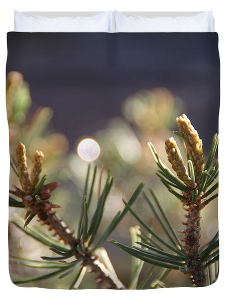 Duvet Cover featuring the photograph Pine by David S Reynolds