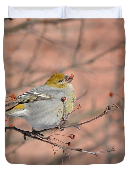 Duvet Cover featuring the photograph Pine Grosbeak by James Petersen