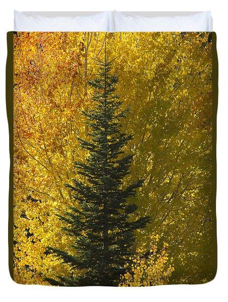 Pine In Aspens Duvet Cover