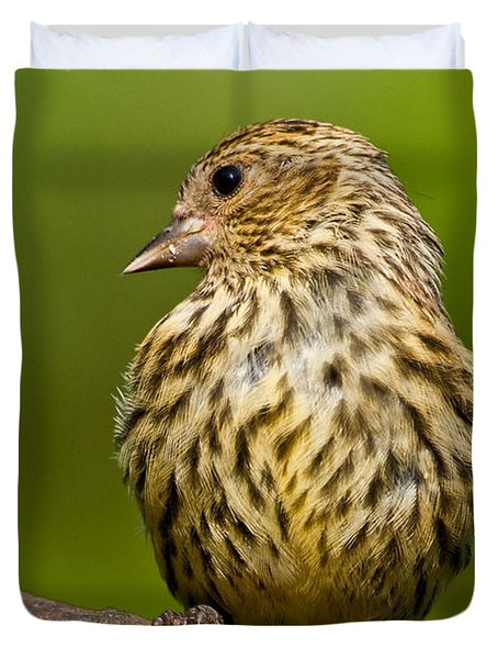 Pine Siskin With Yellow Coloration Duvet Cover