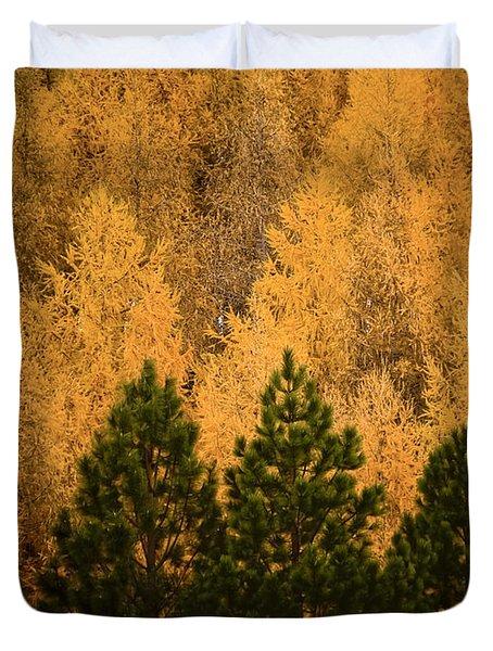 Pine Trees Duvet Cover by Tim Hester