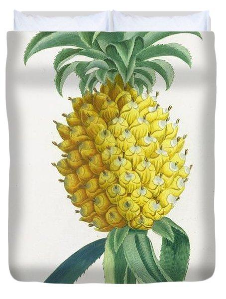 Pineapple Engraved By Johann Jakob Haid Duvet Cover by German School