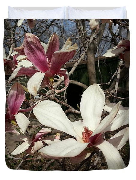 Duvet Cover featuring the photograph Pink And White Spring Magnolia by Caryl J Bohn