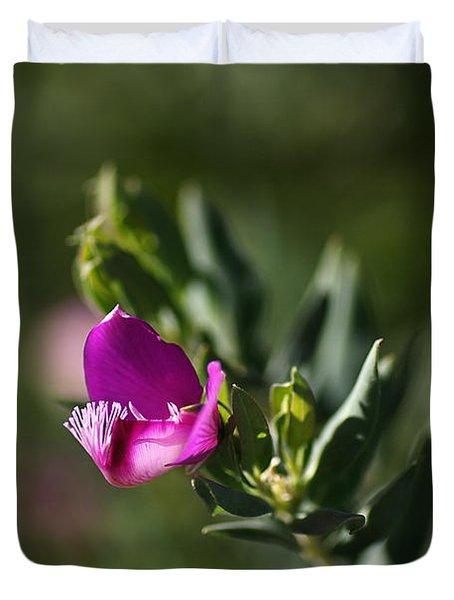Pink Blush - Sweet Pea Bush  Duvet Cover by Joy Watson