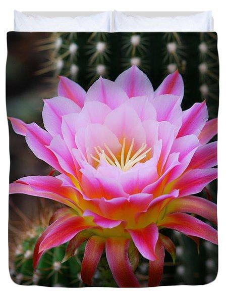 Pink Cactus Flower Duvet Cover by Nancy Mueller