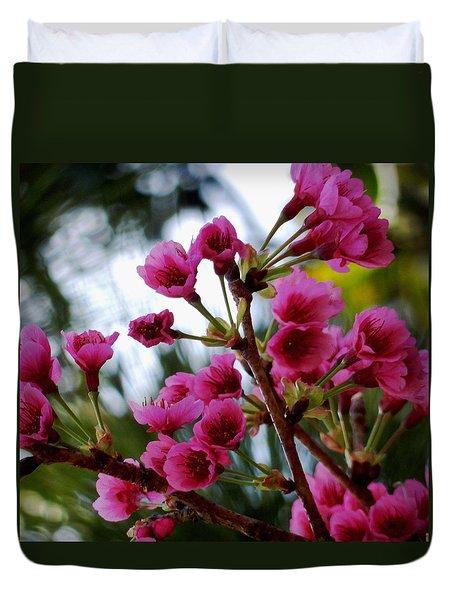 Pink Cherry Blossoms Duvet Cover by Pamela Walton