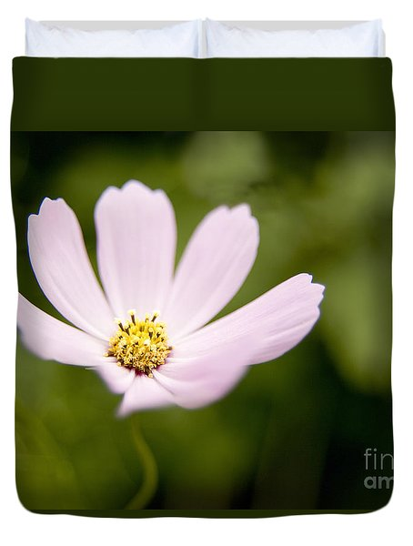 Pink Coreopsis Daisy Duvet Cover