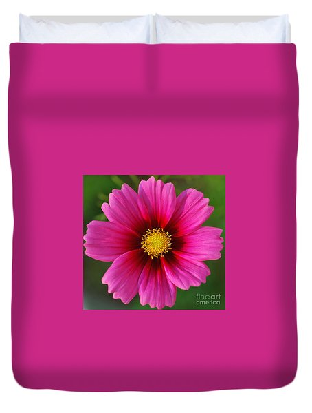Pink Cosmos Duvet Cover by Kathleen Struckle