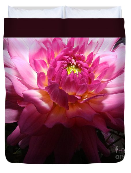 Pink Dahlia Opening Collection No. P49 Duvet Cover