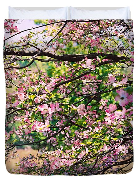 Pink Dogwood I Duvet Cover by Anita Lewis