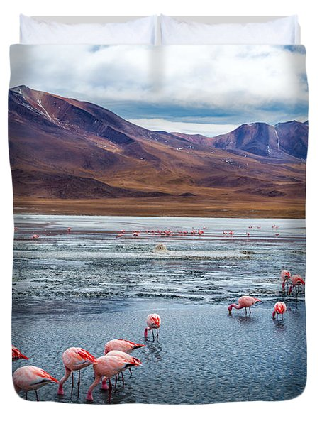 Pink Flamingoes In Bolivia Duvet Cover