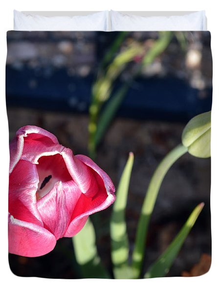 Pink Flower And Bud Duvet Cover by Brent Dolliver