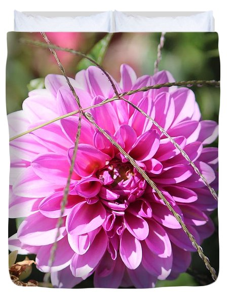 Pink Flower Duvet Cover by Cynthia Snyder
