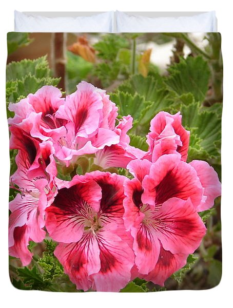 Duvet Cover featuring the photograph Pink Geraniums by Lew Davis