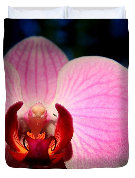 Duvet Cover featuring the photograph Pink House by Greg Allore