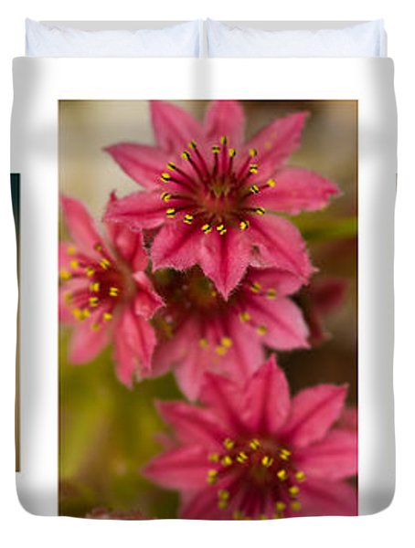 Duvet Cover featuring the photograph Pink Joy by Trevor Chriss