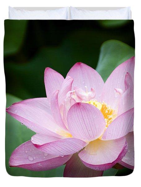 Pink Lotus Flower Duvet Cover by Oscar Gutierrez