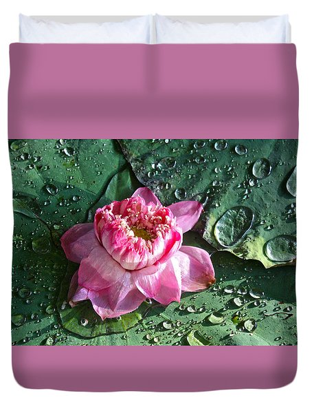 Pink Lotus Flower Duvet Cover by Venetia Featherstone-Witty