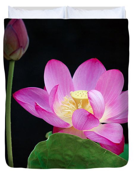 Pink Lotus Flowers Duvet Cover by Eva Kaufman