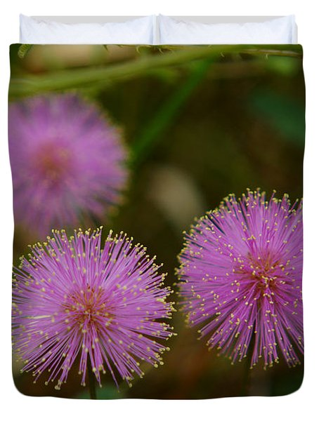 Pink Mimosa Duvet Cover by Kim Pate