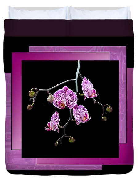Framed Orchid Spray Duvet Cover by Patti Deters