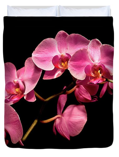 Pink Orchids 3 Duvet Cover