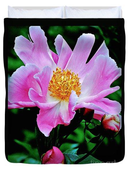 Pink Peony Garden  Duvet Cover by Carol F Austin
