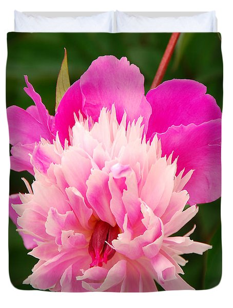 Pink Peony Duvet Cover by Mary Carol Story