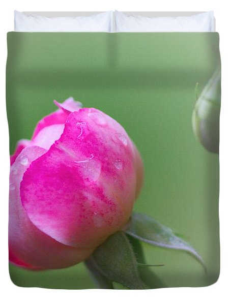 Pink Rose And Raindrops Duvet Cover