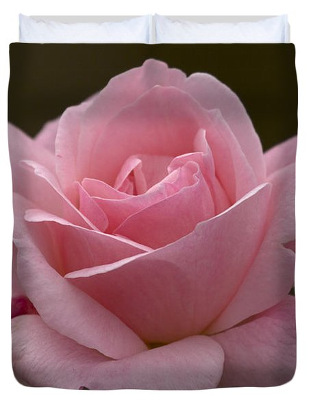 Duvet Cover featuring the photograph Pink Rose by Meg Rousher