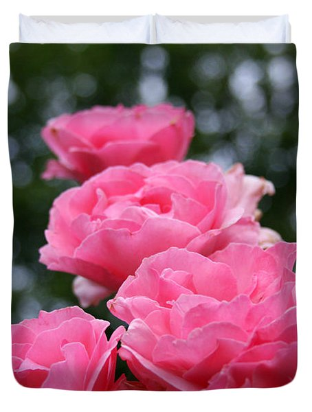 Pink Roses At Sunset Duvet Cover by Vadim Levin