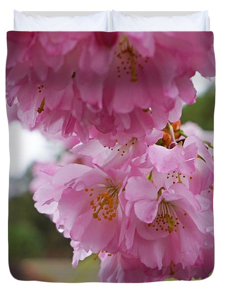 Pink Spring Tree Blossoms Art Prints Duvet Cover by Baslee Troutman