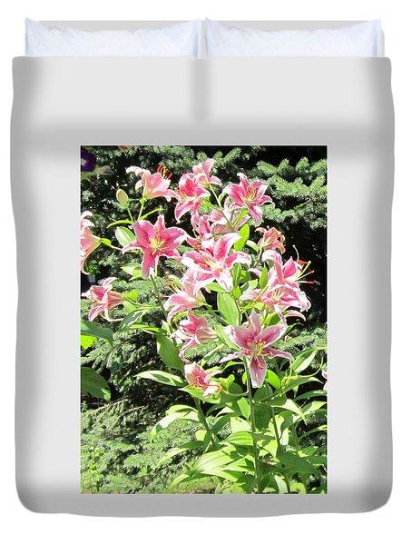 Pink Stargazer Lilies-greeting Card Duvet Cover