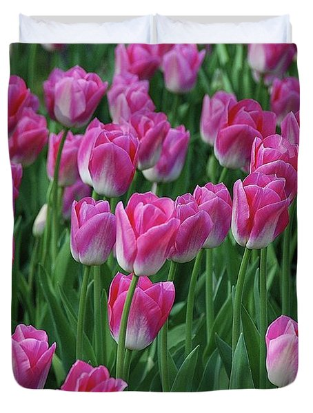 Duvet Cover featuring the photograph Pink Tulips 2 by Allen Beatty