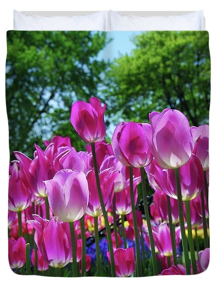 Duvet Cover featuring the photograph Pink Tulips by Allen Beatty