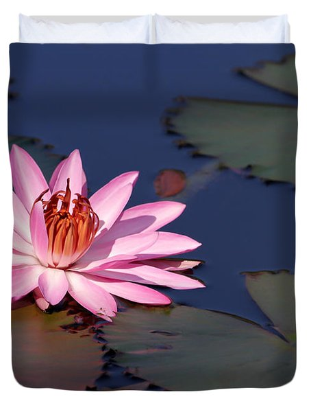 Pink Water Lily In The Spotlight Duvet Cover by Sabrina L Ryan