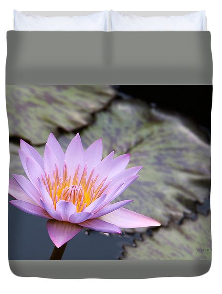 Pink Water Lily At Dusk Duvet Cover by Yvonne Wright