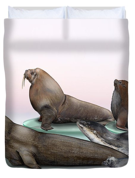 Duvet Cover featuring the painting Pinnipeds  - Walruses Odobenidae - Eared And Earless Seals Otariidae Phocidae - Interpretive Panels by Urft Valley Art
