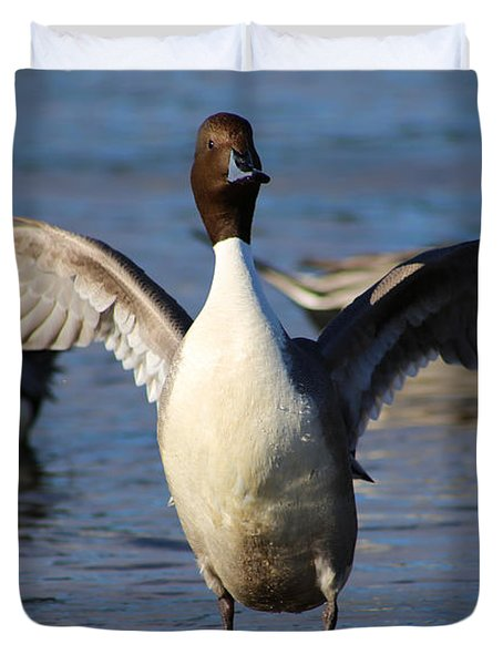 Pintail Duck- Look At Me Duvet Cover
