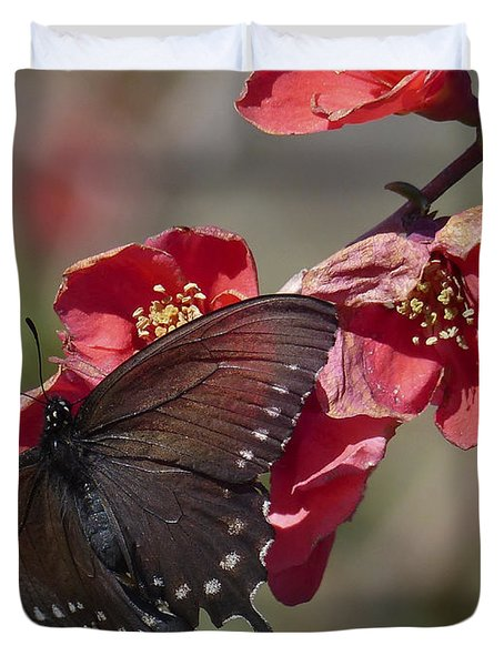 Pipevine Swallowtail And Roses Duvet Cover
