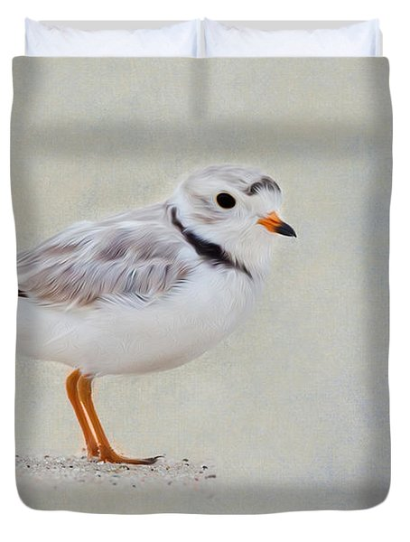 Piping Plover Duvet Cover by Bill Wakeley
