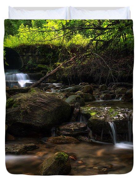 Pixley Falls State Park 2 Duvet Cover