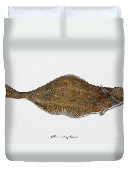 Plaice Pleuronectes Platessa - Flat Fish Pleuronectiformes - Carrelet Plie - Solla - Punakampela Duvet Cover