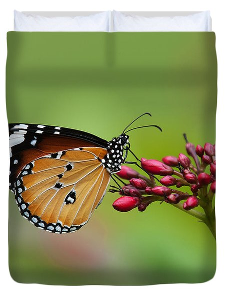 Plain Tiger Or African Monarch Butterfly Dthn0008 Duvet Cover