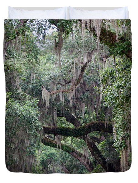 Plantation Path Duvet Cover