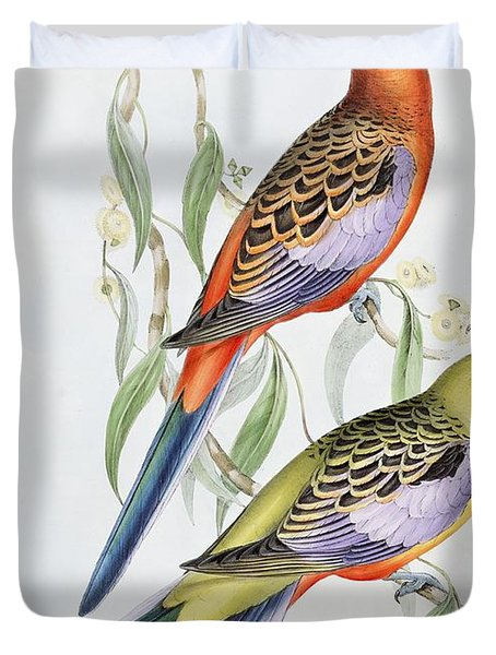 Platycercus Adelaidae From The Birds Of Australia Duvet Cover by John Gould